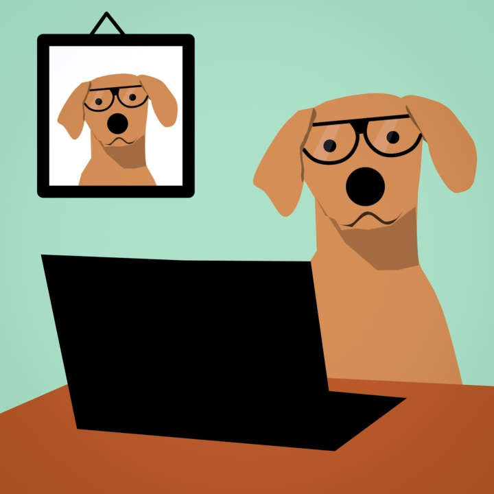 dog_in_front_computer
